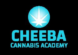 Cheeba-Academy-Logo-transparent-3D
